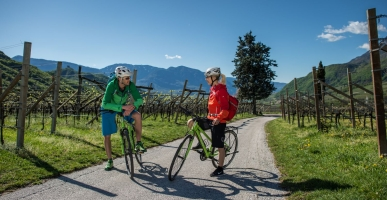 Cycling trails in South Tyrol