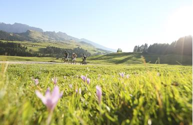 Panoramic MTB Tour on Alpe di Siusi/Seiser Alm